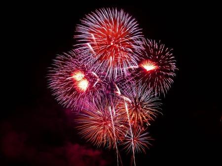 Feuerwerk in Friedrichshafen beim Seehasenfest