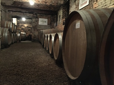 barriques cellar 5.JPG