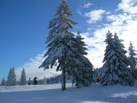 winter-1005480_1920